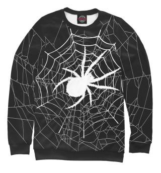 Свитшот  мужской Паук в паутине